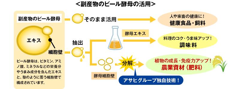 副産物のビール酵母の活用