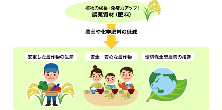 植物の成長・免疫力アップ!