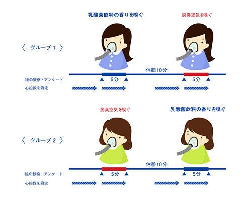 図3:ヒトでの試験の概要