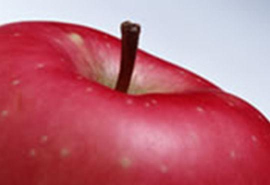 りんごポリフェノールを摂取することが美白に繋がることをヒトで確認