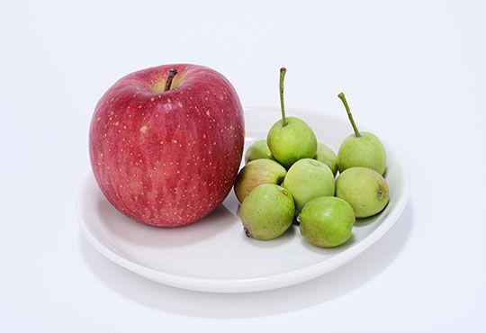 りんごポリフェノールと膝軟骨との意外な関連