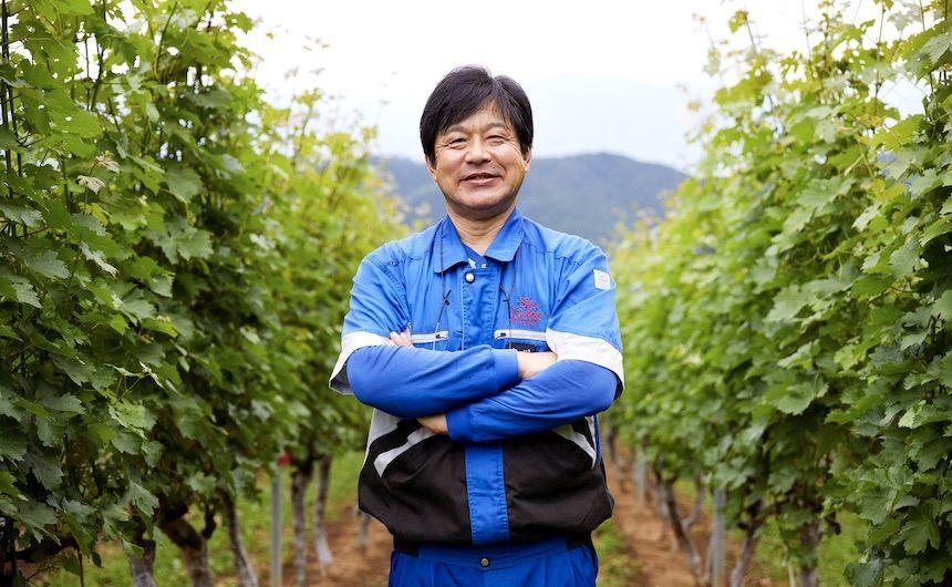 日本人の嗜好がつくる「日本ワイン」