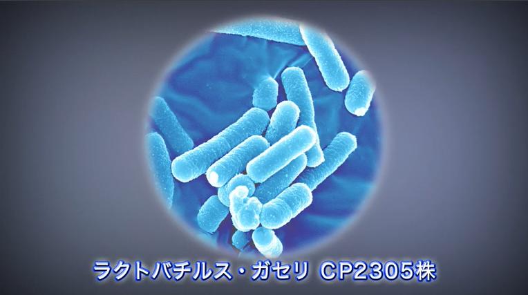 第2話 乳酸菌のはたらき [再生時間:2分26秒]