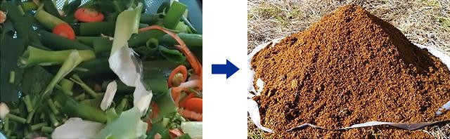 野菜くずの写真と、できた堆肥の写真