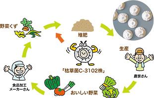 廃棄される野菜くずを堆肥化して野菜をつくる、循環型農業を説明するイラスト画像